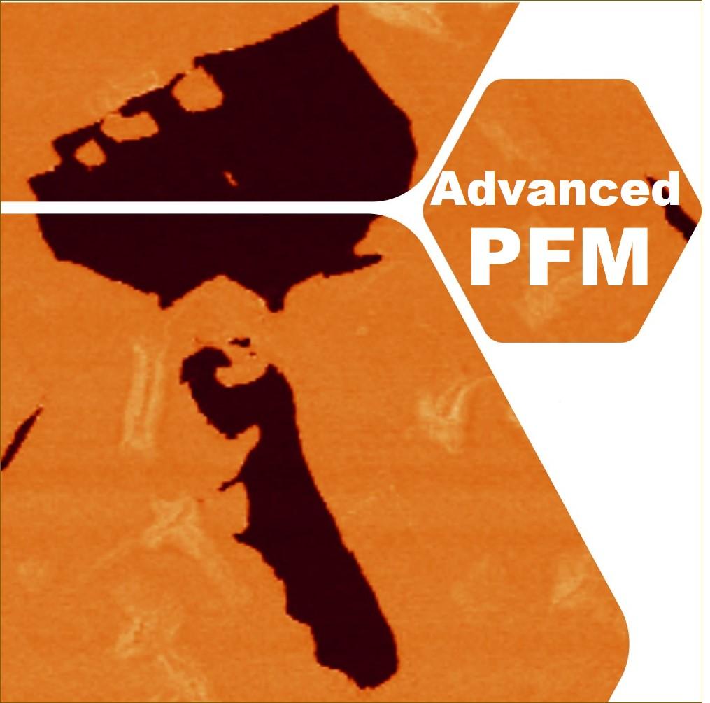 Thumbnail PFM