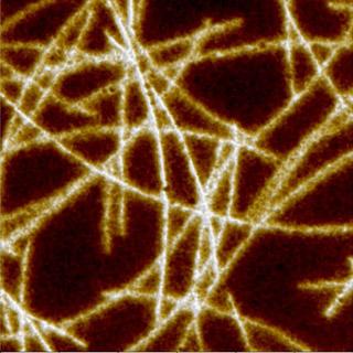 PET coated nanowires