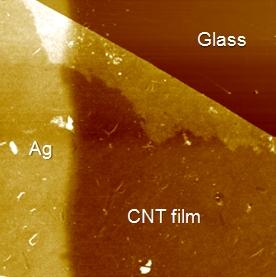 CNT Film
