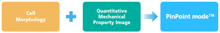 quantitative-mechanical-property-imaging-by-PinPoint-modes