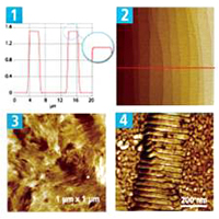 201310-webinar-park-afm-capture-sample