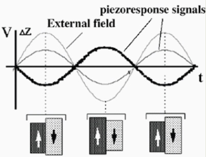 piezoelectric-force-microscopy-pfm-f2