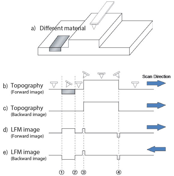 Lateral-Force-Microscopy-LFM-f2